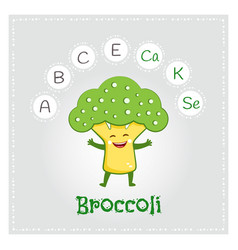 broccoli vegetable vitamins and minerals vector image