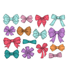 color bows sketch fashion tie bow accessories vector image