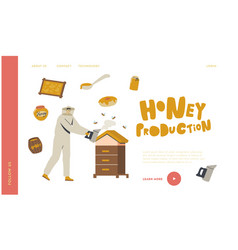 Farmer producing honey apiculture natural product vector