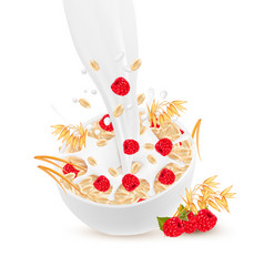 milk flowing into a bowl with grain and raspberry vector image