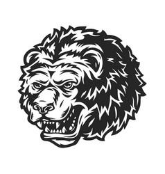strong ferocious bear head template vector image