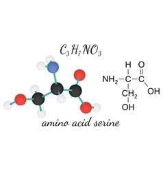 C3H7NO3 serine amino acid molecule vector image vector image