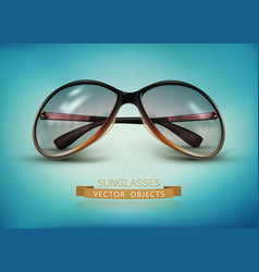 sunglasses isolated on a blue background vector image vector image