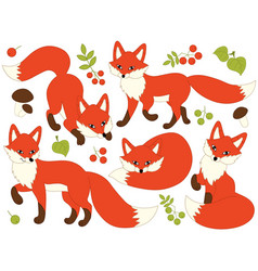 set of cute cartoon foxes vector image