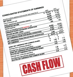Cash Flow Rubber Stamp text On Statement vector image vector image