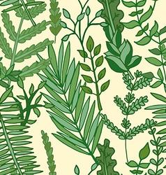 herbal pattern hand drawn vector image