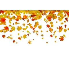 Background autumn leaves eps 8 vector