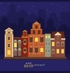 cute colorful night buildings vector image