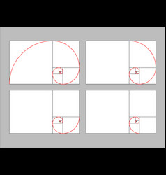 golden ratio section vector image