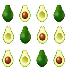 Realistic avocado banner isolated white background vector