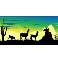 llama wildlife background vector image vector image