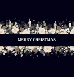 banner with christmas tree branches roses vector image