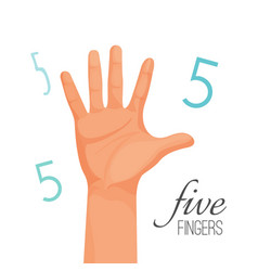five fingers poster with headline male hand vector image