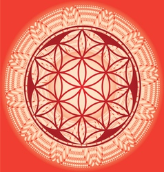 Flower of life seed mandala vector