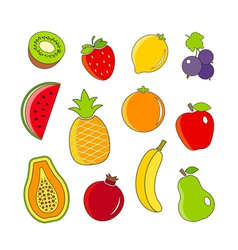 Organic fresh fruits and berries outline icons vector image