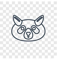 raccoon concept linear icon isolated on vector image