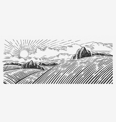 Rural landscape with hills in graphic style vector