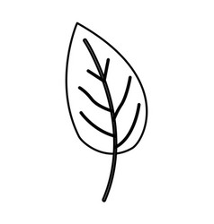 sketch contour of simple leaf plant side view vector image