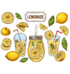 sketch lemonade summer cold drinks hand drawn vector image