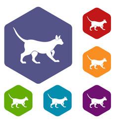cat icons set hexagon vector image vector image