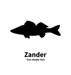 silhouette of zander vector image vector image