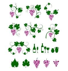 Grape vines design elements set vector image vector image