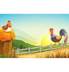 A hen and rooster in the farm vector