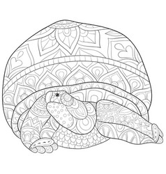 Adult coloring bookpage a turtle with ornaments vector