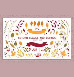 Autumn leaves and berries flat set vector
