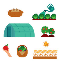 farming and gardening scenes set in flat cartoon vector image