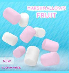Marshmallow white and pink on isolated vector