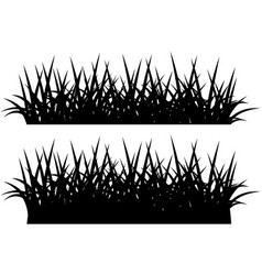 silhouette of grass black on white vector image