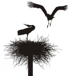 Storks in nest vector