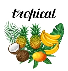 Background with tropical fruits and leaves Design vector image