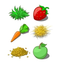 Animals food corn grass hay carrot vector