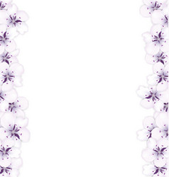 frame template blooming sakura blue flowers vector image