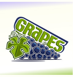 grapes still life vector image vector image