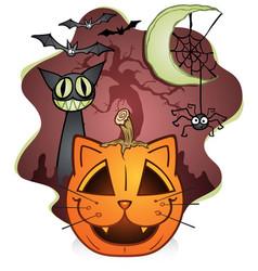 halloween pumpkin cat spider and moon vector image