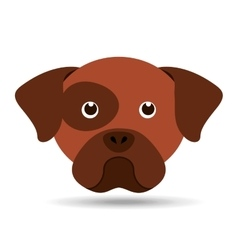 lovely head puppy dog boxer vector image