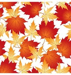 Maple pattern vector