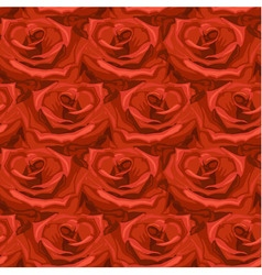 seamless pattern from roses vector image