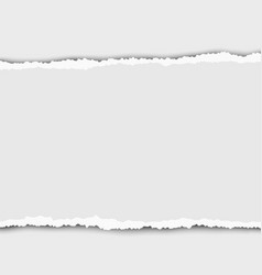 Torn elongated piece white paper from left vector