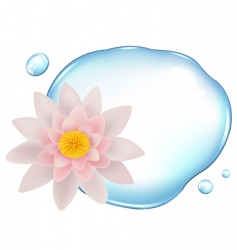 lotus over water vector image vector image