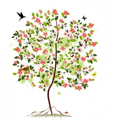 apple blossom tree vector image