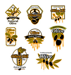 olive oil premium product trademark label set vector image vector image