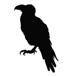 Decorative bird Line art Rook Black and white vector image