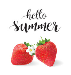 hello summer strawberries vector image