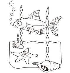 Sea life coloring book vector