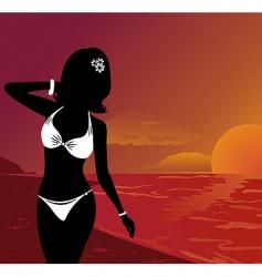 sunset on beach vector image