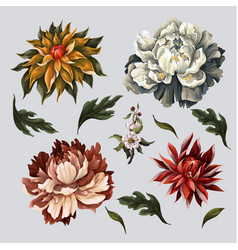 vintage dark flowers such as peony rose and vector image